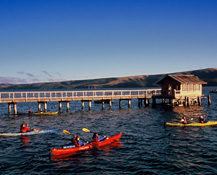 kayaking along the nick's cove boathouse